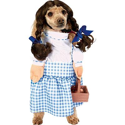 Dog costume dorothy