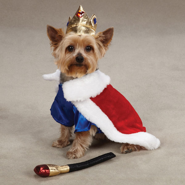 King dog Costumes