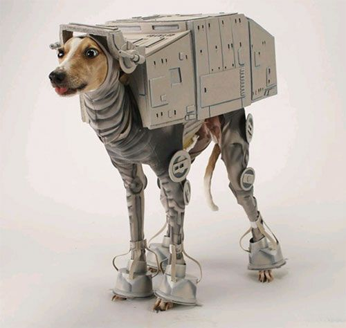 Star War Dog Halloween Costumes