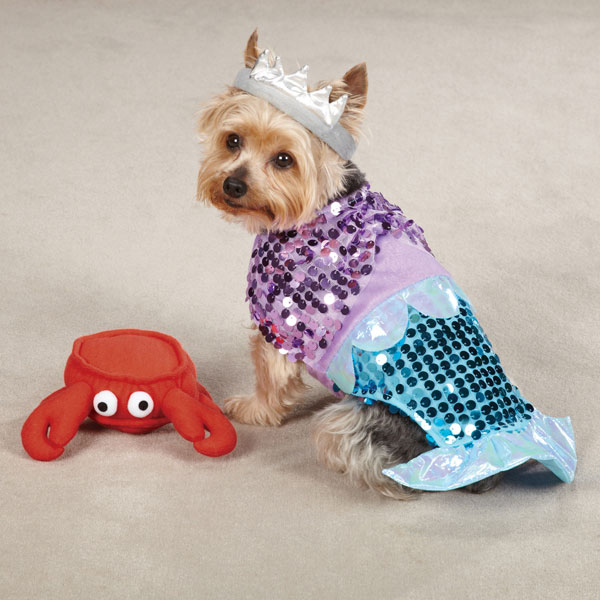 glimmermaid dog costume