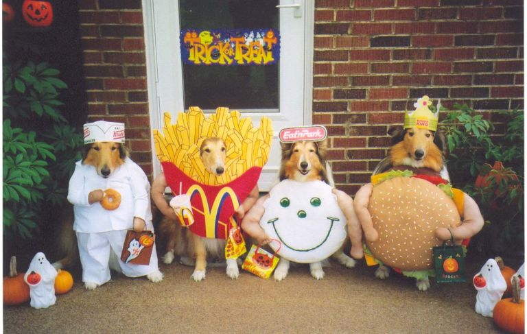 junk food dog costumes
