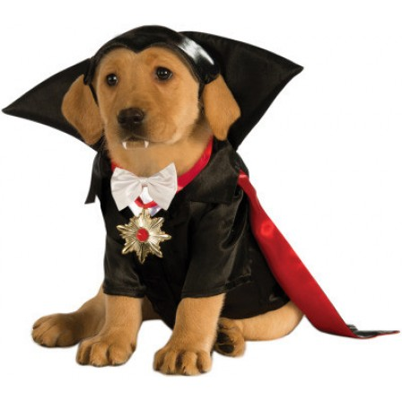 rubies dracula dog costume