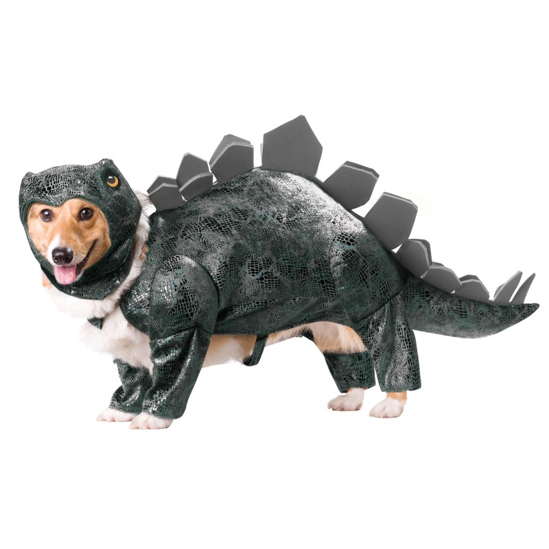 stegasaurus dog costume