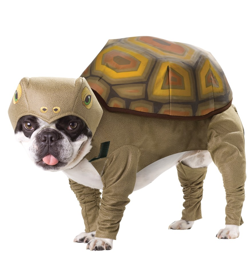 turtle dog costumes
