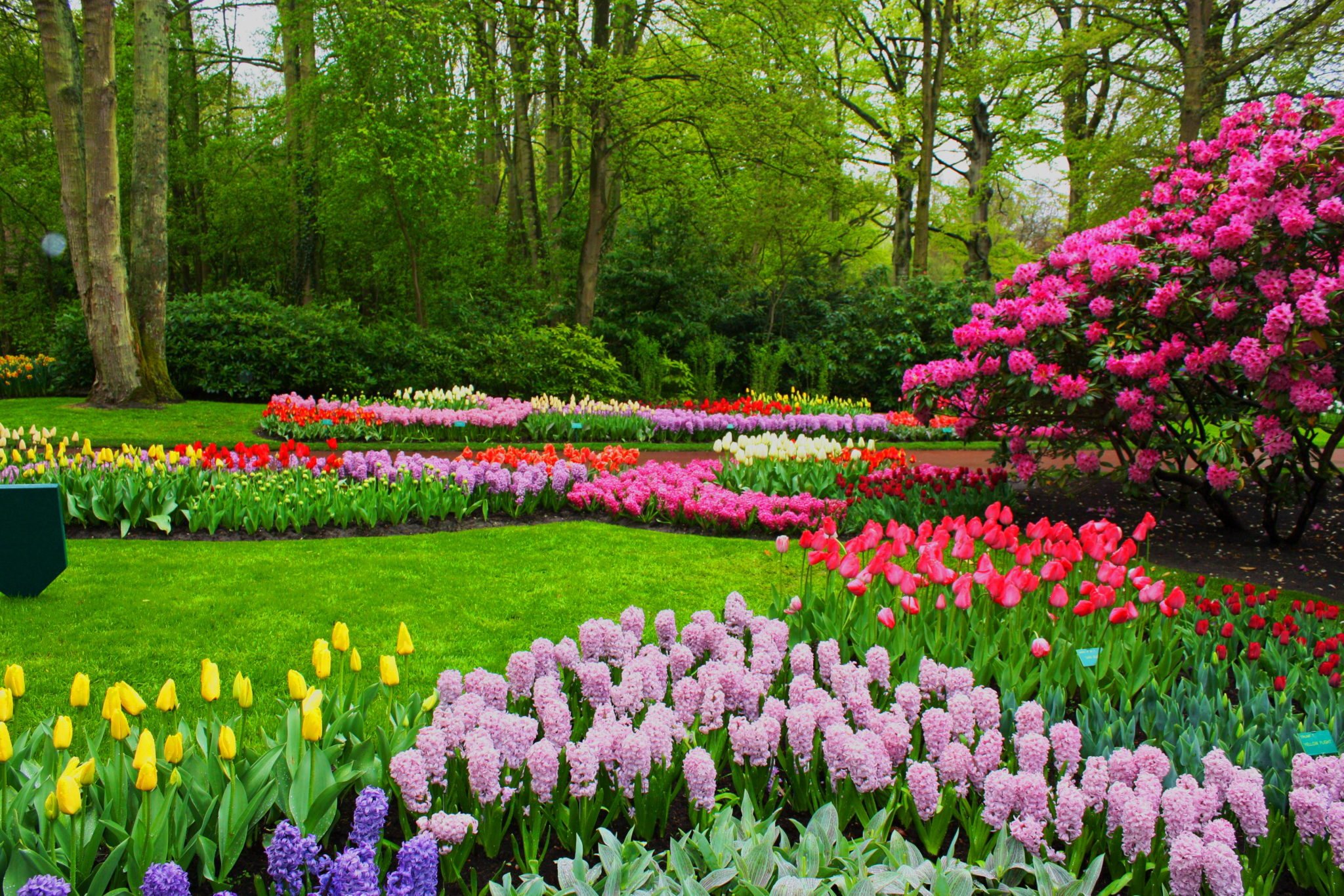 35 Beautiful Spring Pictures and Wallpapers - photo#9