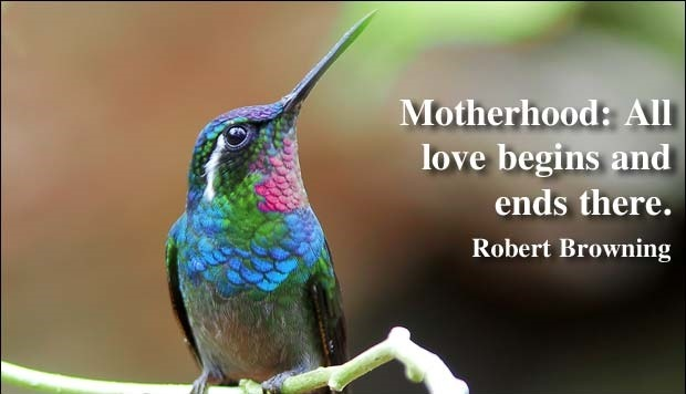 Robert Browning Mother Quotes