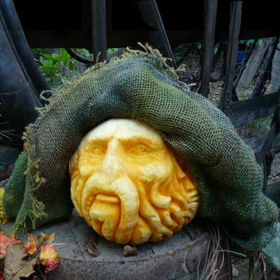 Pumpkin Carving Bill Nighy