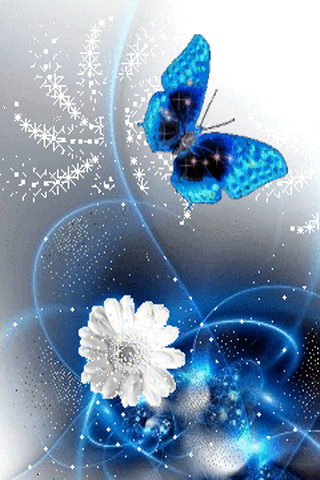 Blue butterfly Phone Wallpaper