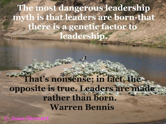 leaders are not born